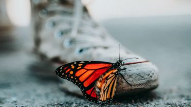vlinderziekte-Epidermolysis Bullosa