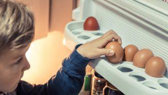 eieren-in-koelkast