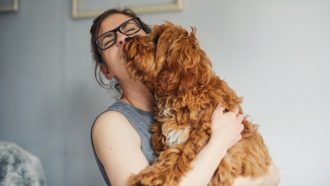 honden-luisteren-vrouwen