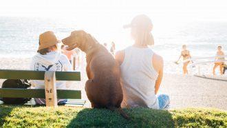 geslaagde-zomer-checklist