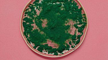 Voedingssupplement Spirulina