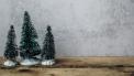 kerst schoonfamilie