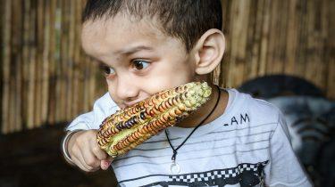 Kind die vegetariër is geworden en maïs eet
